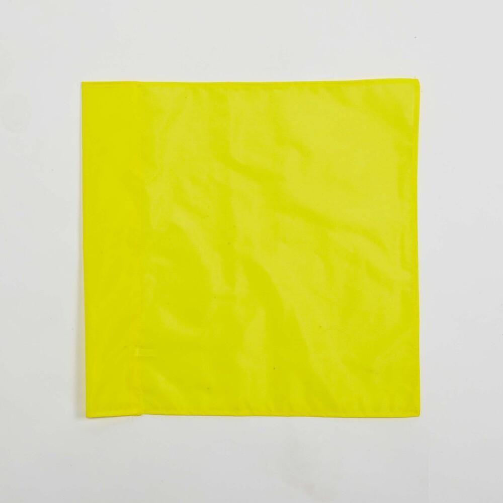 ProAct PA087 - FLAG