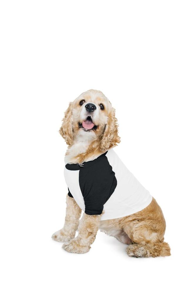 American Apparel AMBB953 - Dog T-shirt