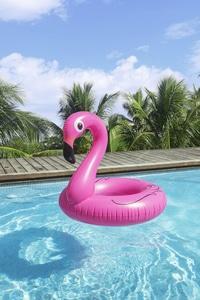 Needen BO1 - Aufblasbarer Schwimmring Pink Flamingo